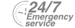 24/7 Emergency Service Pest Control in Hayes, Harlington, UB3, UB4. Call Now! 020 8166 9746