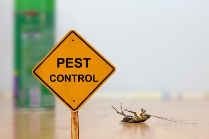 Pest Contol in Hayes, Harlington, UB3, UB4. Call Now 020 8166 9746